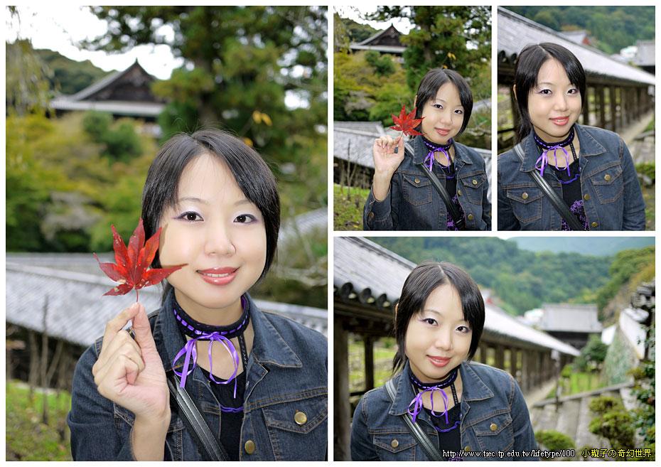 2010-10-29-15.jpg